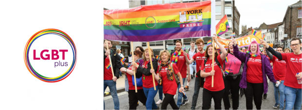 LGBT plus network logo and marching in York Pride 2017