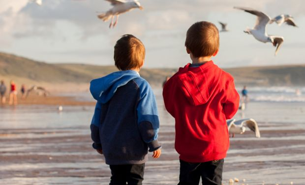 Children feeding seagulls