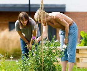 Gardening in Derwenthorpe