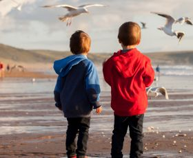 Children feeding seagulls